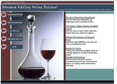 portfolio_pix/Sonoma Valley Review Concept Piece